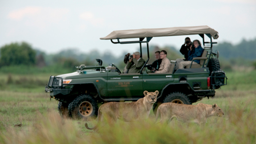 Game Drive Ultimate Africa Safari