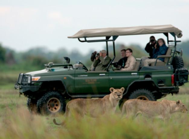 Game Drive Ultimate Africa Safari