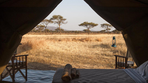 Safari under Canvas Tanzania
