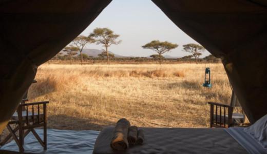 Safari under Canvas Tanzania