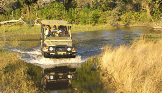 Game Drive at Pom Pom
