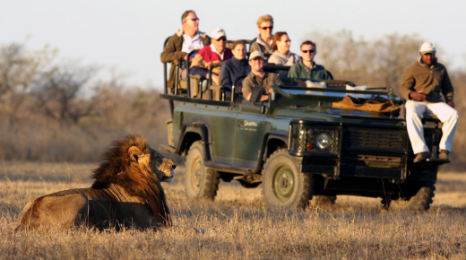 Safari School: Learn about Travelling in South Africa