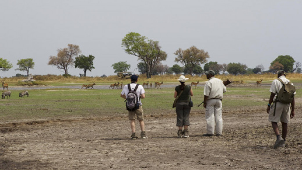 Footsteps Across the Delta - Botswana