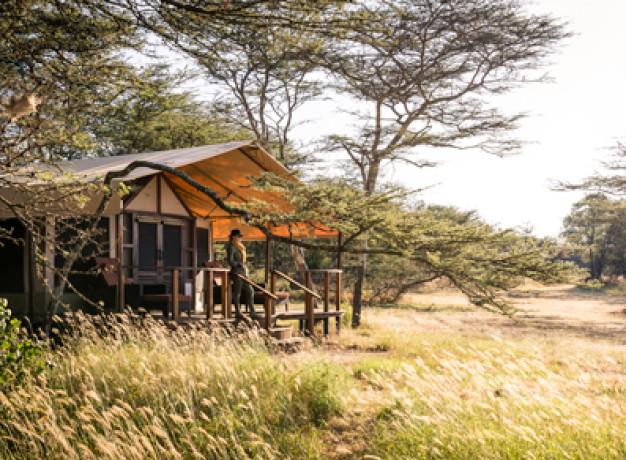 Luxury Camping Serengeti