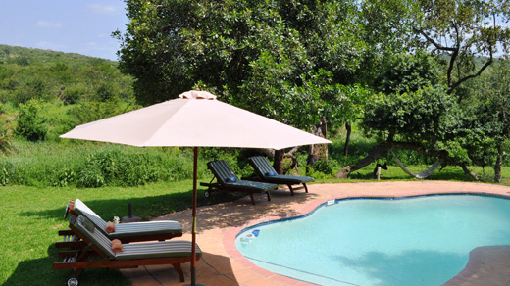 Safari Swimming Pool