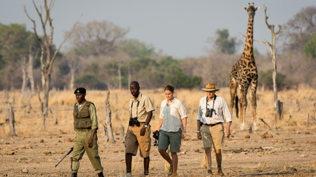 Robin Pope Walking Safari - Zambia