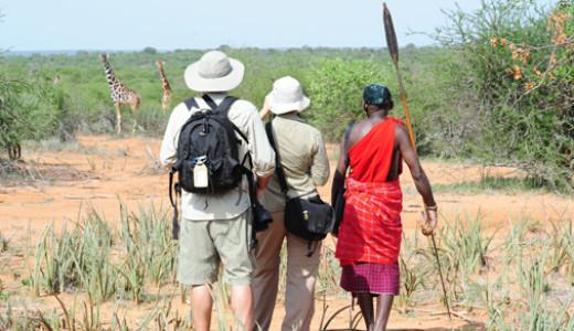 Kenya Wildlife Walking Safari