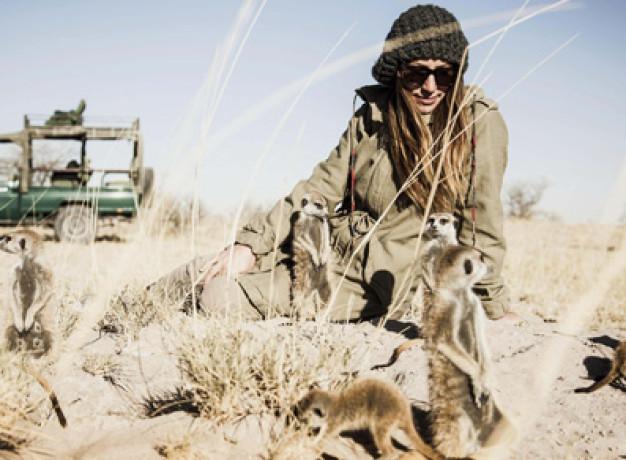 Meerkat Experience - Camp Kalahari