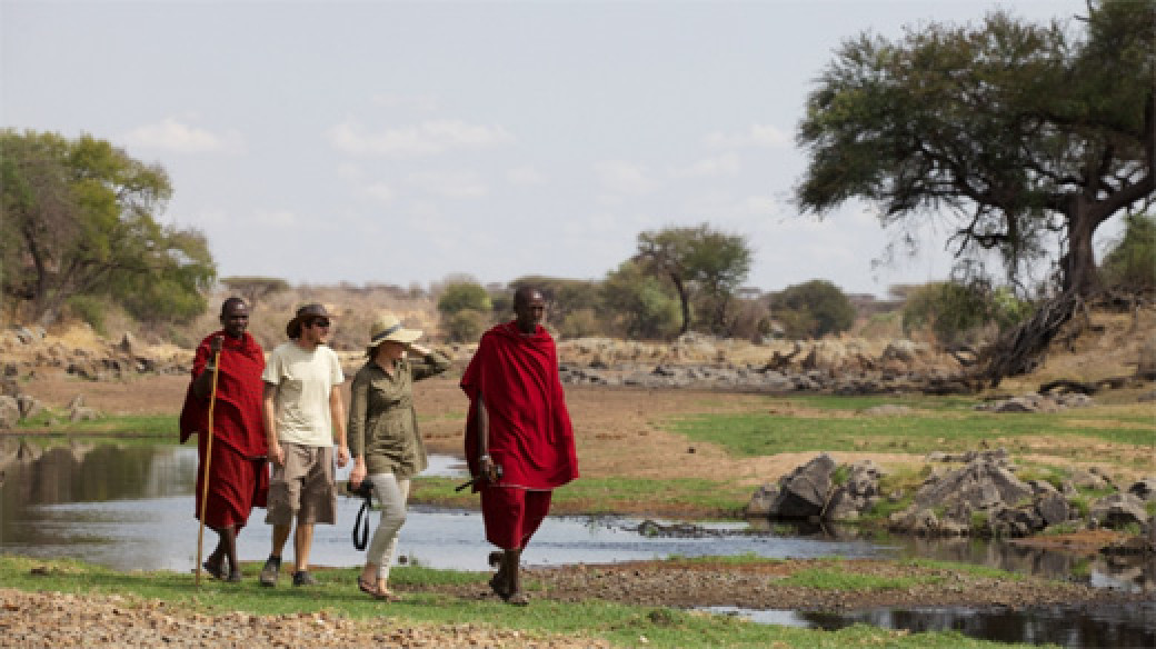 Ruaha River Lodge - Game Walking
