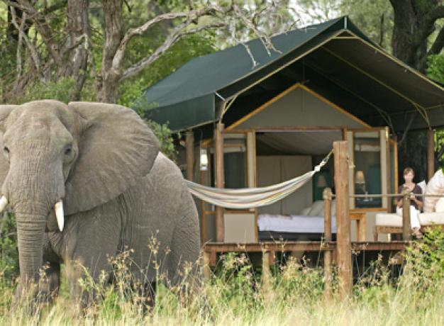 Luxury Safari Botswana