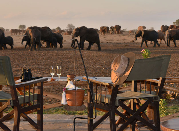 Satao Camp Kenya