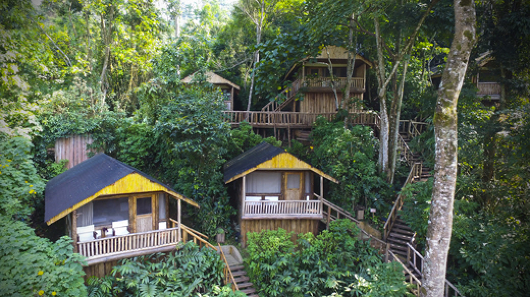 Gorilla Trekking Buhoma Lodge