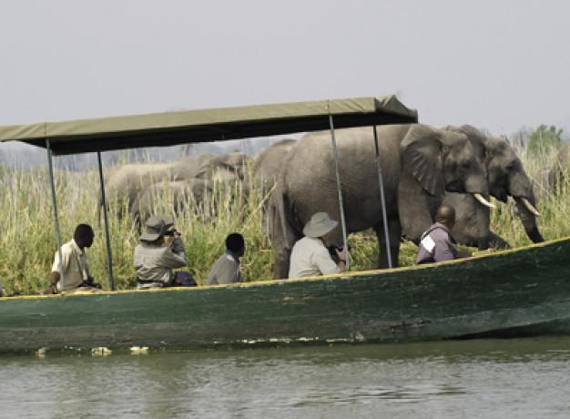 Liwonde Safari Malawi