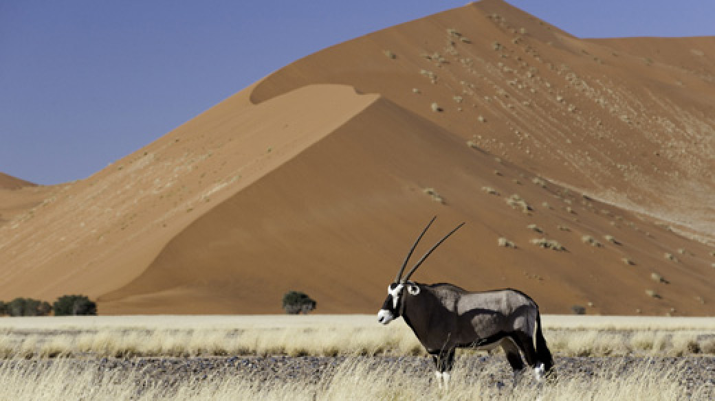 Adventure Safari Tour Namibia