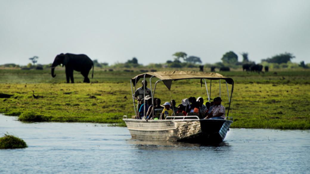 Botswana Safari Chobe