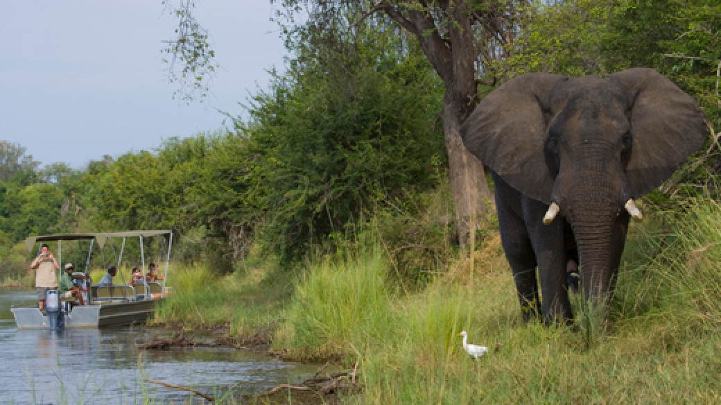 Adventure Safari Zambia