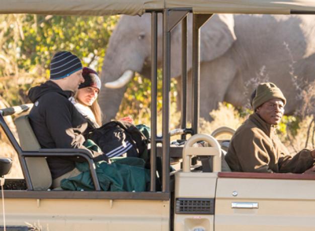Affordable accommodation Okavango Delta