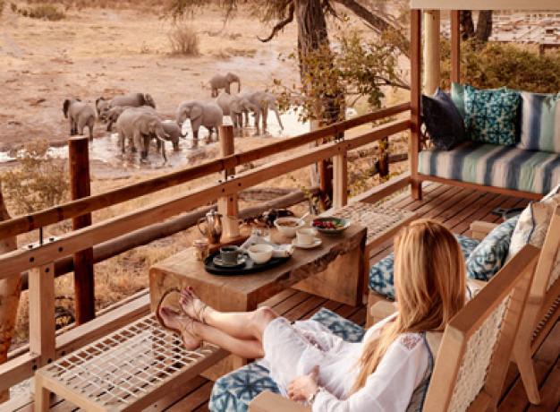 Elephants Waterhole Savute Botswana