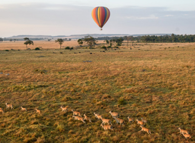 Masai Mara Balloon Flight