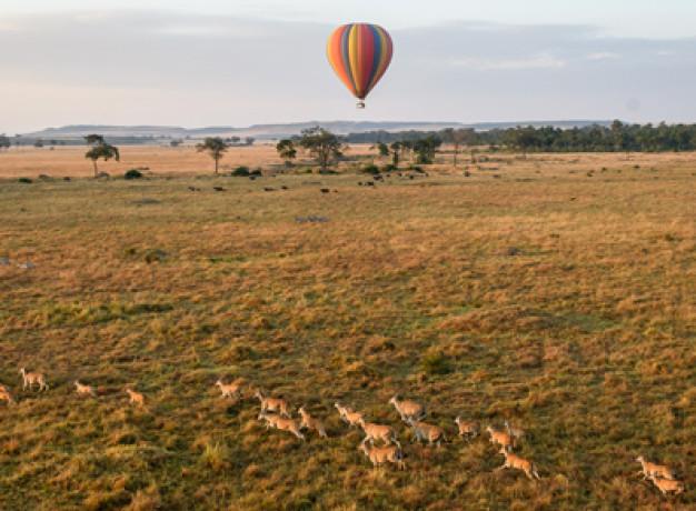 Masai Mara Balloon Flight