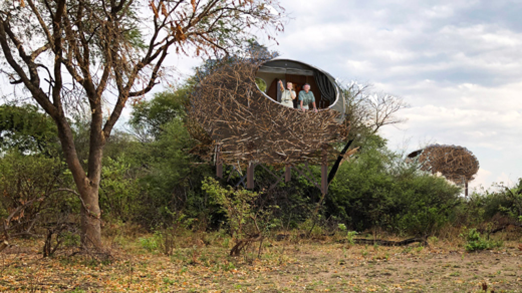 "Chisa Busanga Camp (""The Nest"") lies on a beautiful island in the heart of the Busanga Plains, Kafue National Park, Zambia; overlooking vast flood plains and dambos that teem with wildlife."