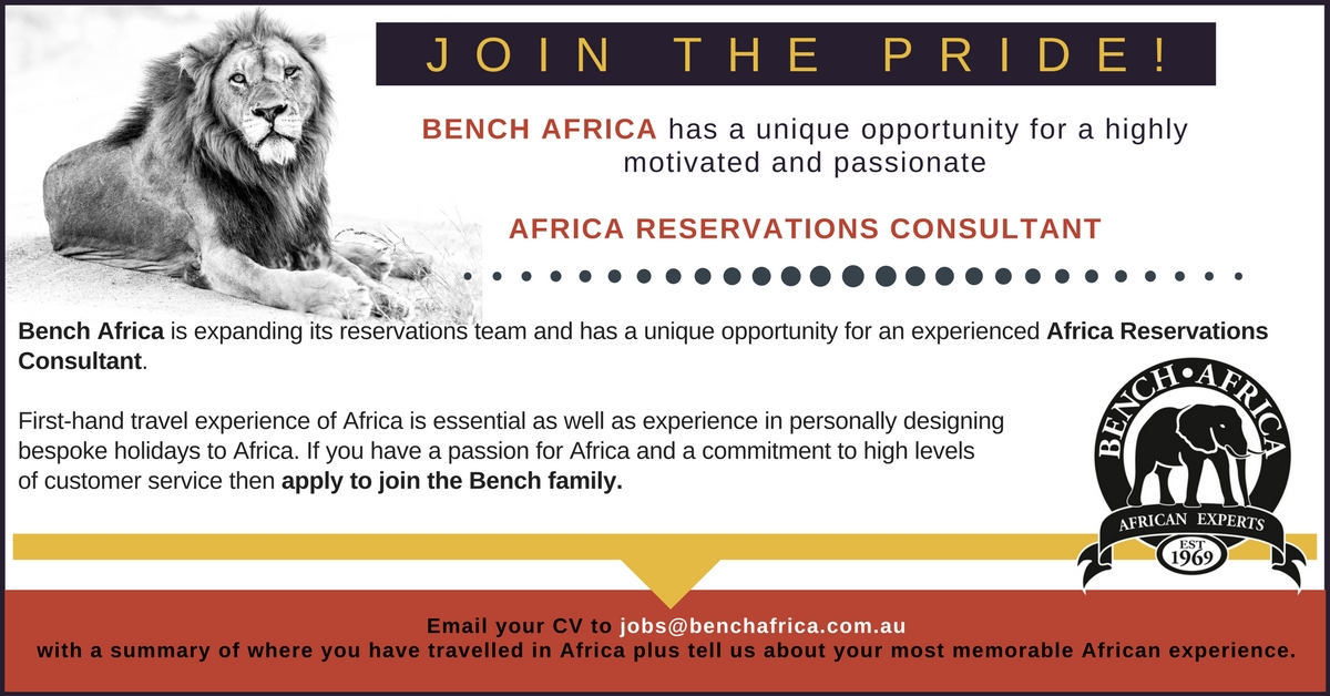 Careers with Bench Africa | Bench Africa