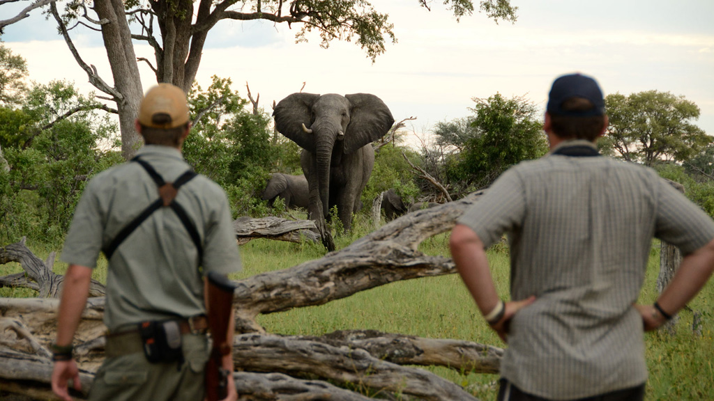 Safari School: Concerns when Travelling in Africa