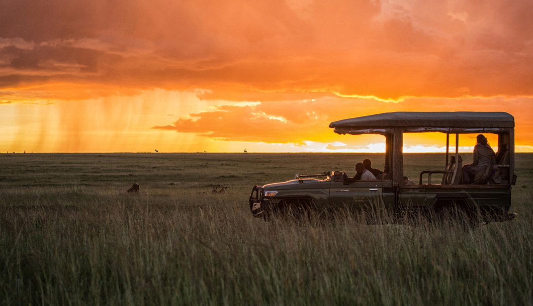 Safari Tours with Bench Africa