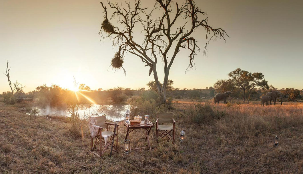 Watching the sun rise in the Timbavati Private Game Reserve, South Africa