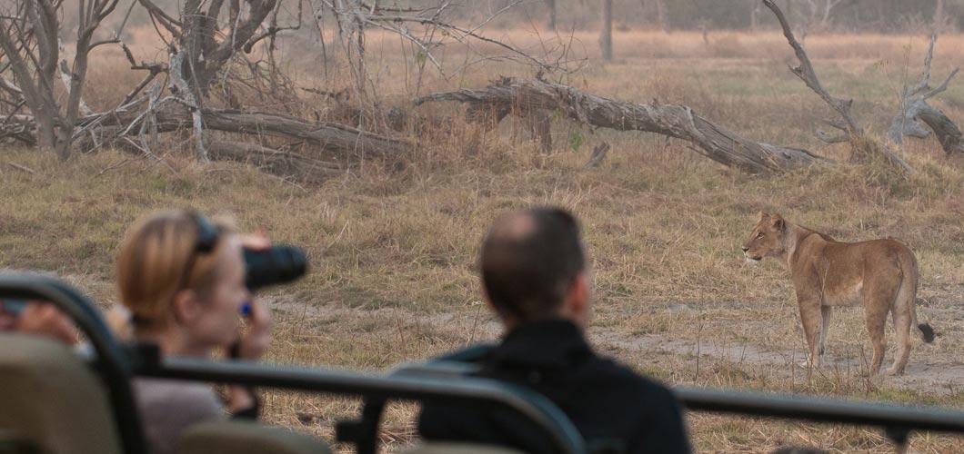 Safari Checklist: