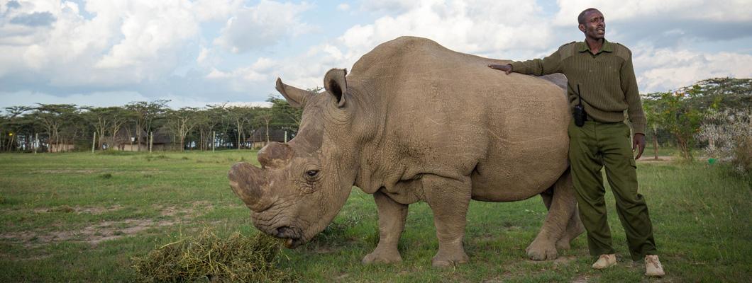 CREDIT: Make it Kenya Photo / Stuart Price