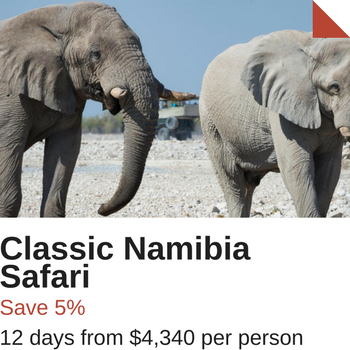 Namibia Special Offer tour