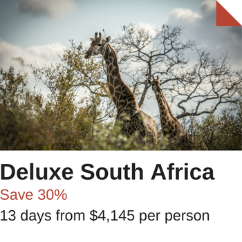 Deluxe South Africa Sale