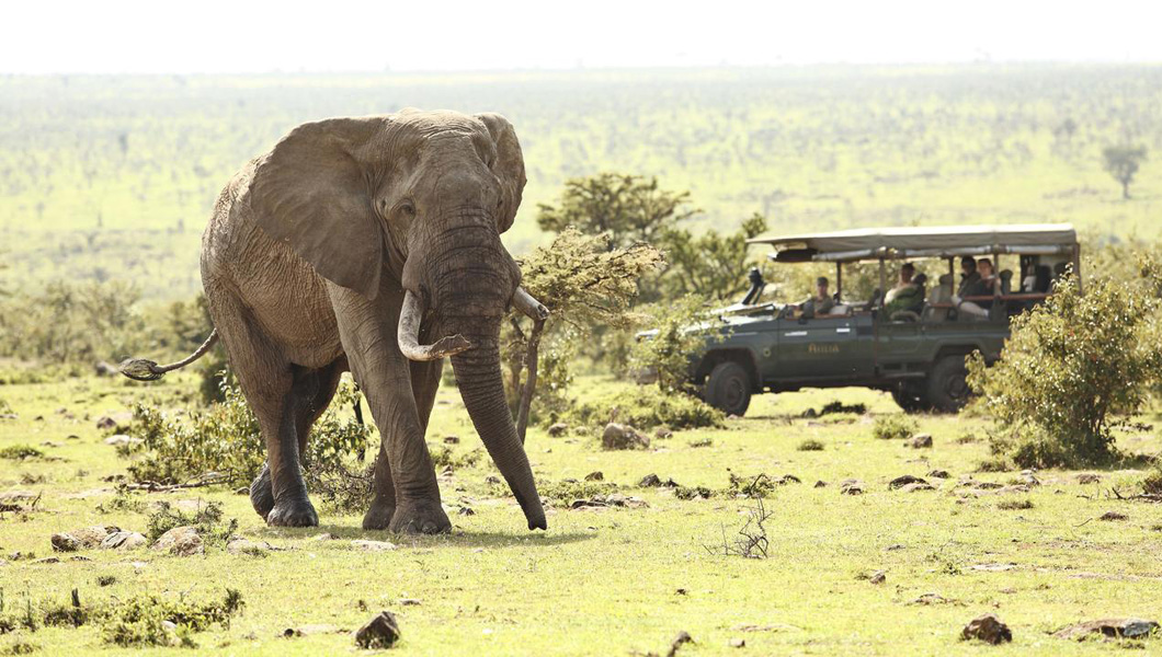 Experience an 'authentic' safari in Kenya and Tanzania