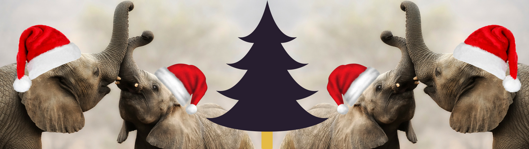 Let's Celebrate Christmas – Africa