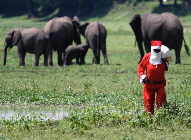 Bushcamp Company Christmas Santa
