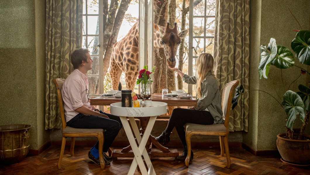 1. Have Breakfast with the Giraffes at Giraffe Manor
