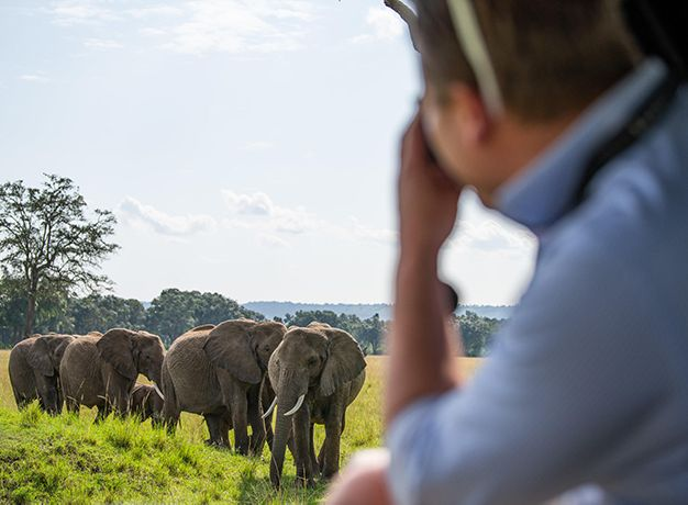 The best time to travel to the Masai Mara for the ultimate safari experience.