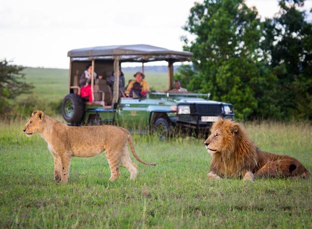 Safari Seasons Masai Mara