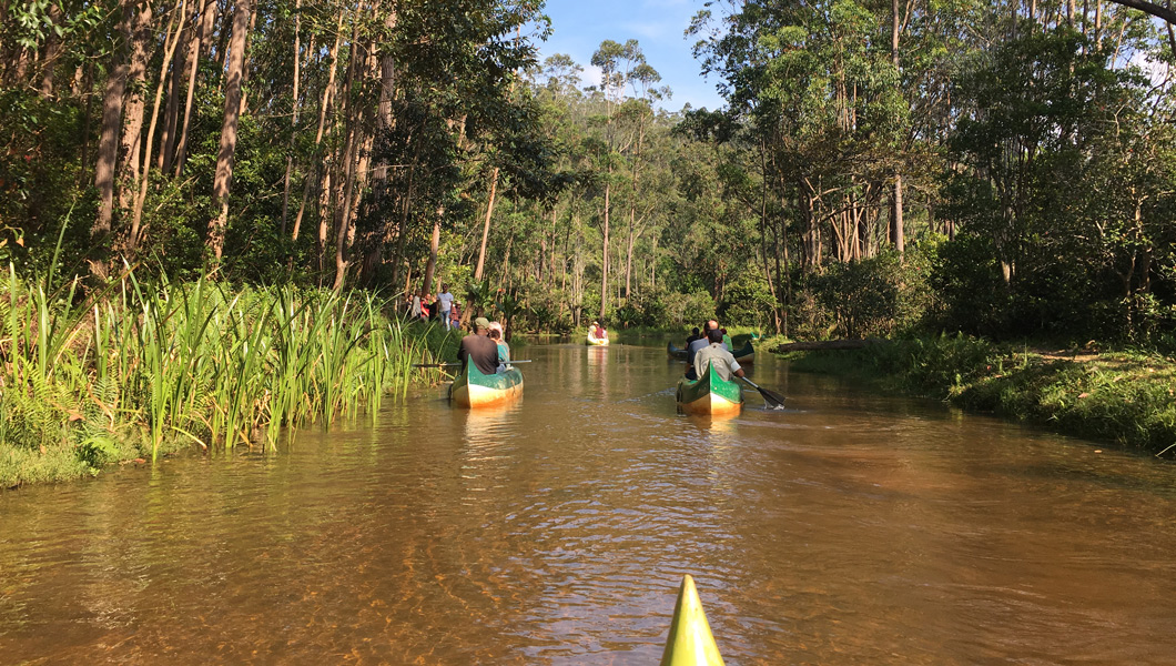 Our Madagascar Travels: A Canoe Ride in Andasibe National Park