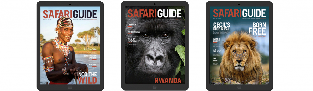 Bench Africa proudly presents The Safari Guide; a digital magazine brought to you by our team of proud and passionate Africa experts at Bench Africa. This stylish digital magazine, aimed at the sophisticated, savvy traveller, was born out of an innate desire to encourage more meaningful travel throughout the continent of Africa - in all its rich diversity. Each issue is packed with Africa travel news, sustainable travel ideas, insider tips, fervent tales, electrifying videos and dramatic imagery. If you care about our planet, if you're desperate to get off the beaten track, if you want to mingle with the locals or just experience 'the extraordinary' in Africa then The Safari Guide has it all.