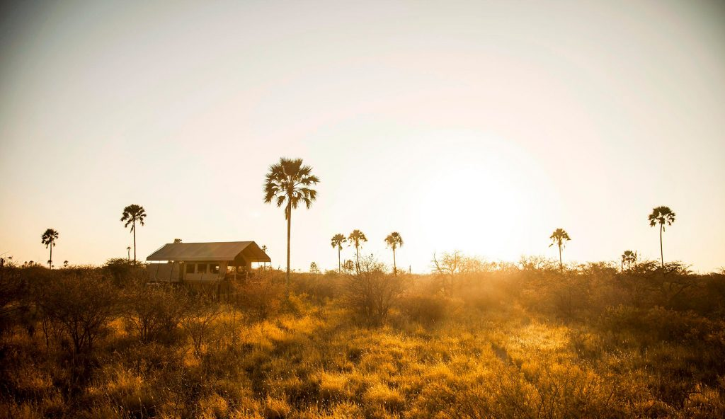 Camp Kalahari is one of only three camps in a one million-acre private wildlife reserve, with just 12, Meru-style tents set amongst the palms.