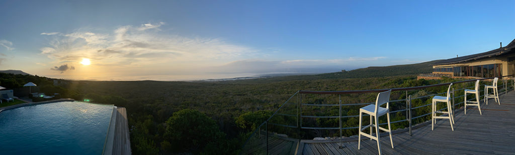 Getting back to nature and relaxing at the luxury Grootbos Private Nature Reserve.