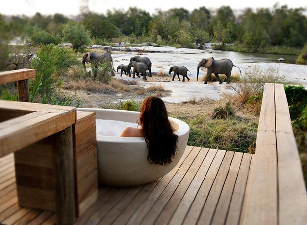 Africa is one of the most romantic places in the world. Where else can you relax in a secluded bathtub on the balcony of your room and watch the birds (and bees) and maybe even catch a glimpse of an elephant replenishing itself from your personal swimming pool. Just hope the elephant doesn't try and drink from the bath you're sitting in. It's common that honeymoon couples are placed in the room furthest away from reception as these rooms are secluded and out of the view (and earshot) of other people. If standing on your balcony in the nude is what you want to do, then why not? Although be warned, baboons do have very judgemental glares.